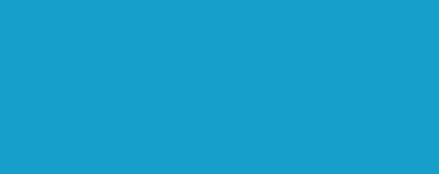 logo png modré text NÁRODNÁ KOALÍCIA